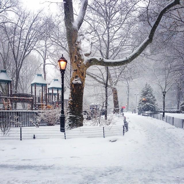 Snow Day. ?❄️