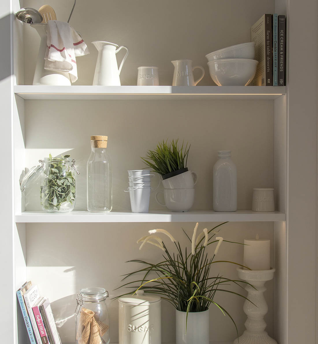 Shelves with neatly stacked books, dishes, and plants